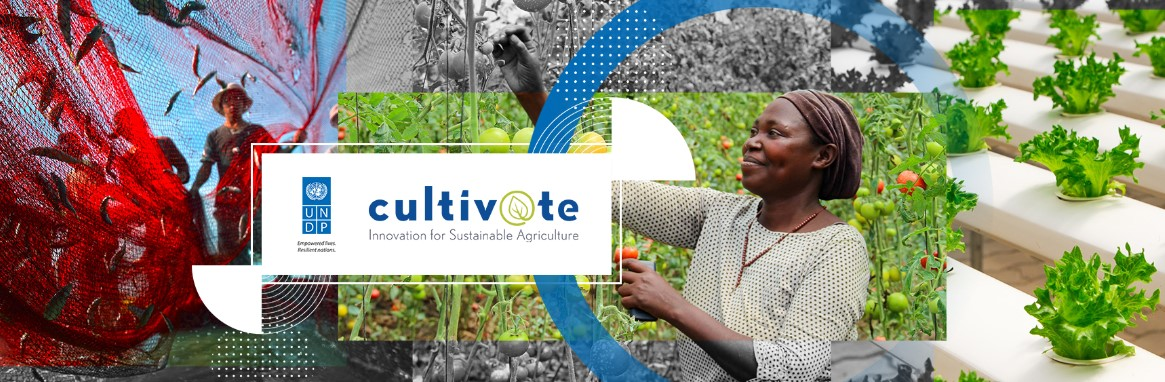 Cultiv@te – Innovation for Sustainable Agriculture
